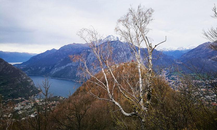 Monte Barro Panorama