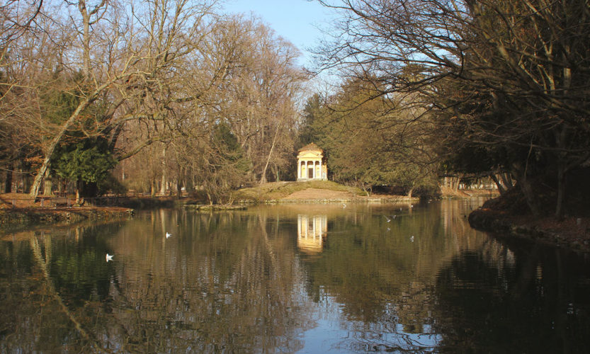 Incursione invernale – Parco di Monza - Gallery Slide #10
