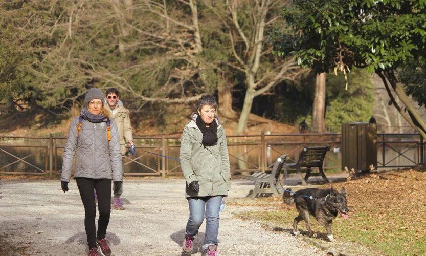 Incursione invernale – Parco di Monza - Gallery Slide #48
